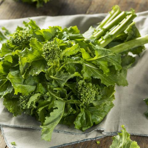 Broccoli Raab Spring Rapuni Organic