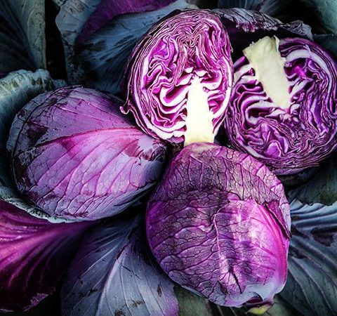 Cabbage Red Express