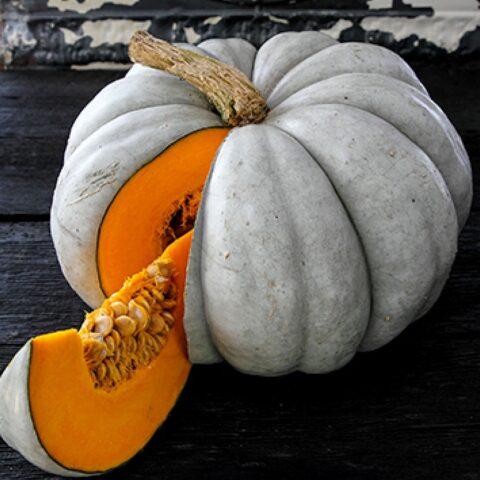Pumpkin Sweet Meat
